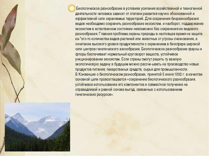 Биологическое разнообразие в условиях усиления хозяйственной и техногенной де...