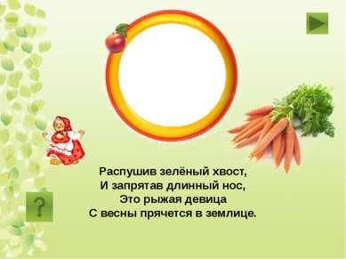 морковь Распушив зелёный хвост, И запрятав длинный нос, Это рыжая девица С ве...