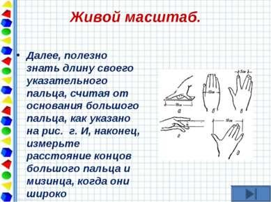 Живой масштаб. Далее, полезно знать длину своего указательного пальца, считая...