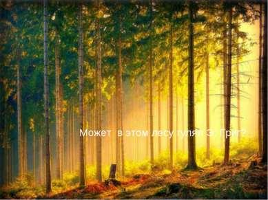 Может в этом лесу гулял Э. Григ?