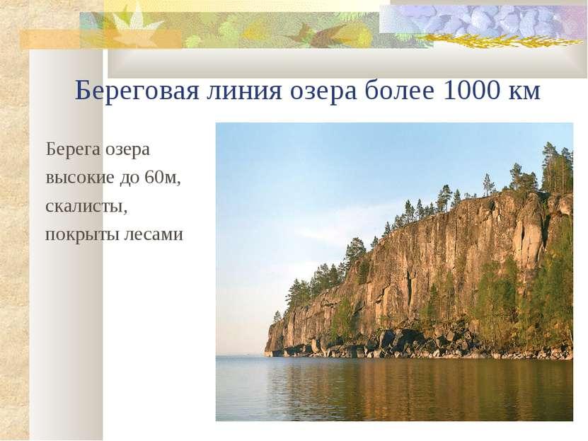 Береговая линия озера более 1000 км Берега озера высокие до 60м, скалисты, по...