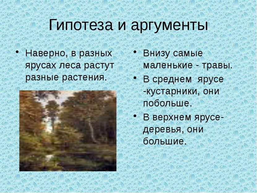 Гипотеза и аргументы Наверно, в разных ярусах леса растут разные растения. Вн...