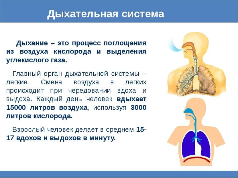 Дыхательная система Дыхание – это процесс поглощения из воздуха кислорода и в...