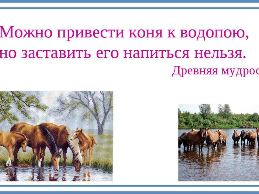 Можно привести коня к водопою, но заставить его напиться нельзя. Древняя мудр...