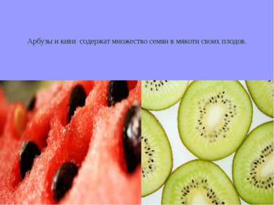 Арбузы и киви содержат множество семян в мякоти своих плодов.