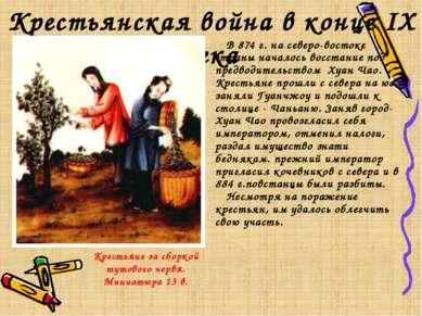 Крестьянская война в конце IX века Крестьяне за сборкой тутового червя. Миниа...