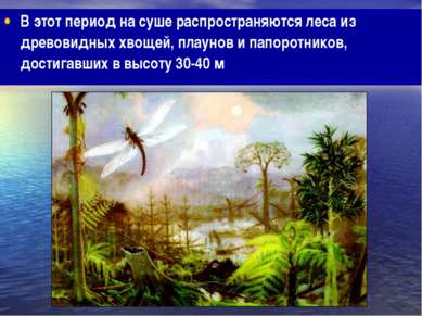 В этот период на суше распространяются леса из древовидных хвощей, плаунов и ...