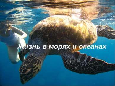 Эпиграф к уроку: Ни разу не был я на океане. Мне даже не представить никогда,...