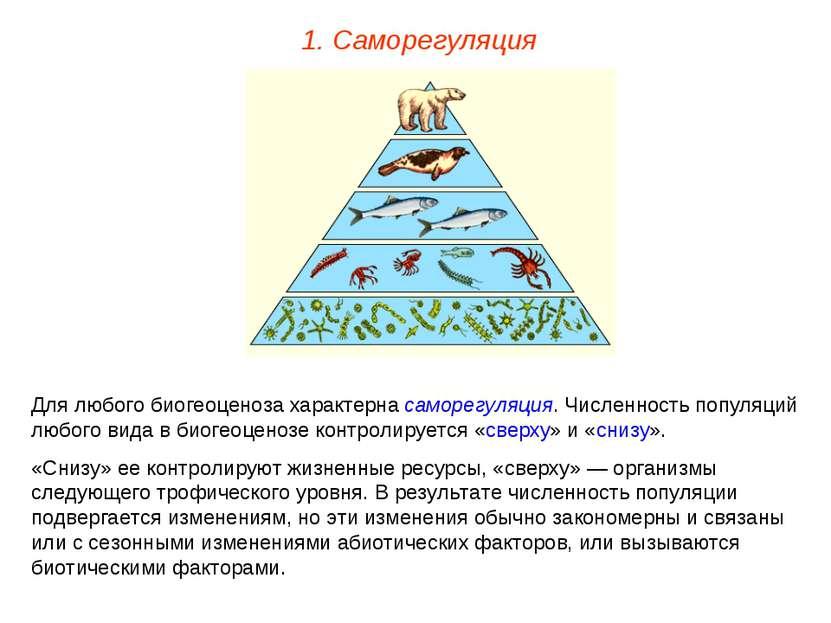 1. Саморегуляция Для любого биогеоценоза характерна саморегуляция. Численност...