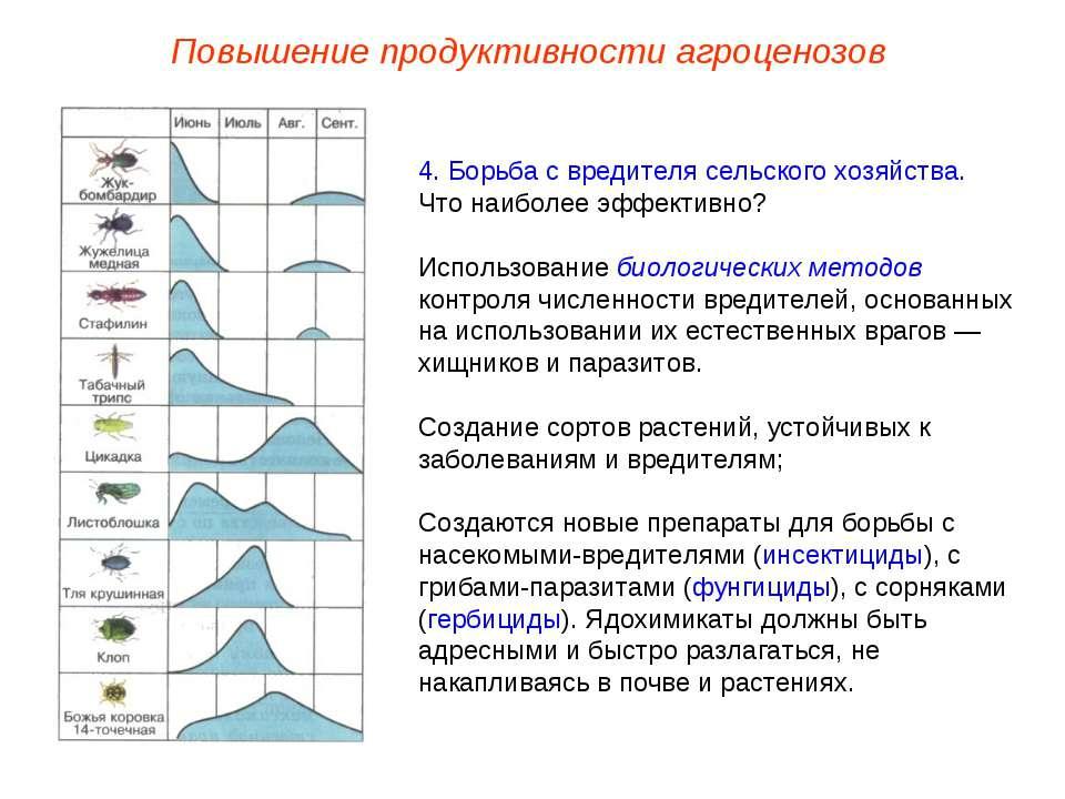 Повышение продуктивности агроценозов 4. Борьба с вредителя сельского хозяйств...
