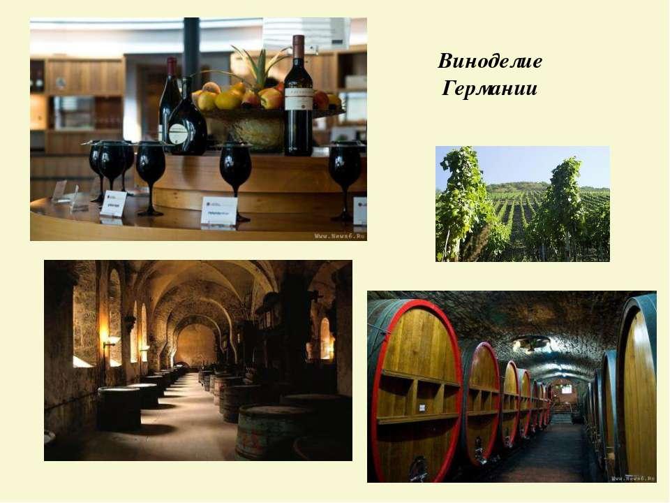 Виноделие Германии