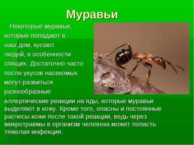Муравьи Некоторые муравьи, которые попадают в наш дом, кусают людей, в особен...
