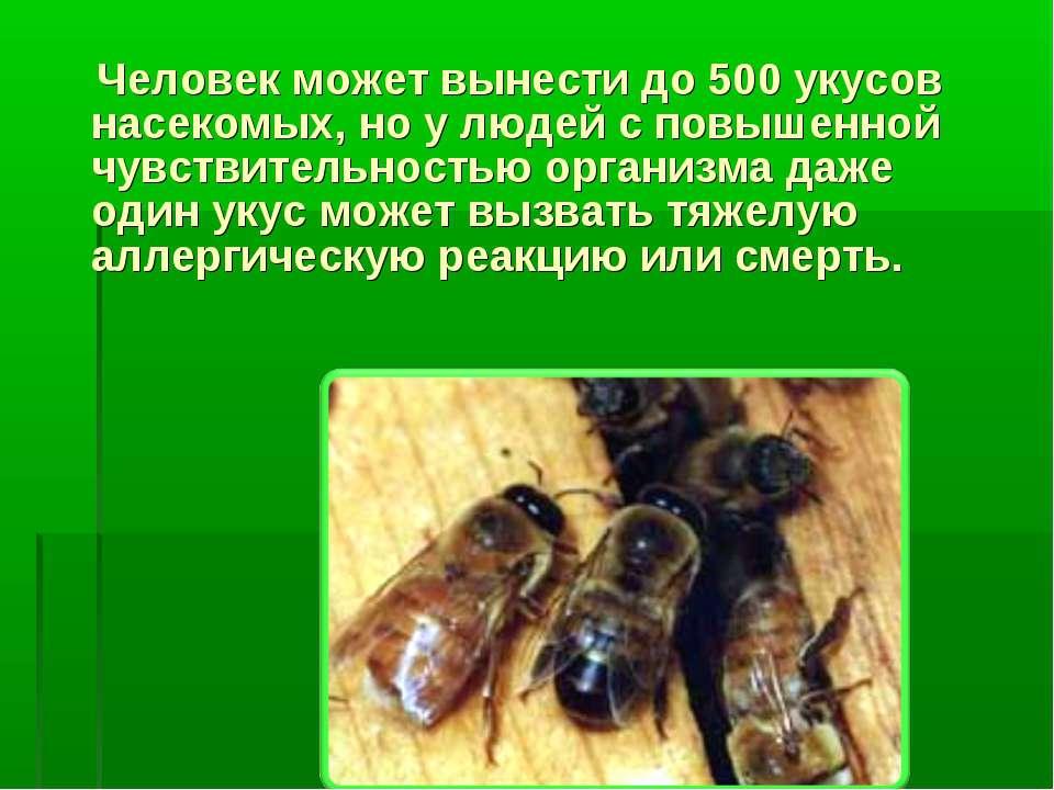 Человек может вынести до 500 укусов насекомых, но у людей с повышенной чувств...