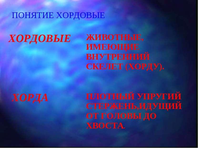 ПОНЯТИЕ ХОРДОВЫЕ ХОРДОВЫЕ ЖИВОТНЫЕ, ИМЕЮЩИЕ ВНУТРЕННИЙ СКЕЛЕТ (ХОРДУ). ХОРДА ...