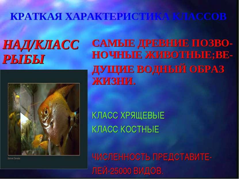КРАТКАЯ ХАРАКТЕРИСТИКА КЛАССОВ НАД/КЛАСС РЫБЫ САМЫЕ ДРЕВНИЕ ПОЗВО- НОЧНЫЕ ЖИВ...
