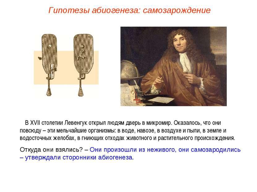 В XVII столетии Левенгук открыл людям дверь в микромир. Оказалось, что они по...