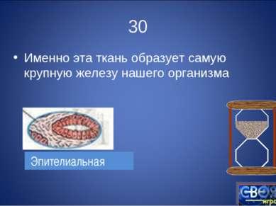 30 Именно эта ткань образует самую крупную железу нашего организма Эпителиальная