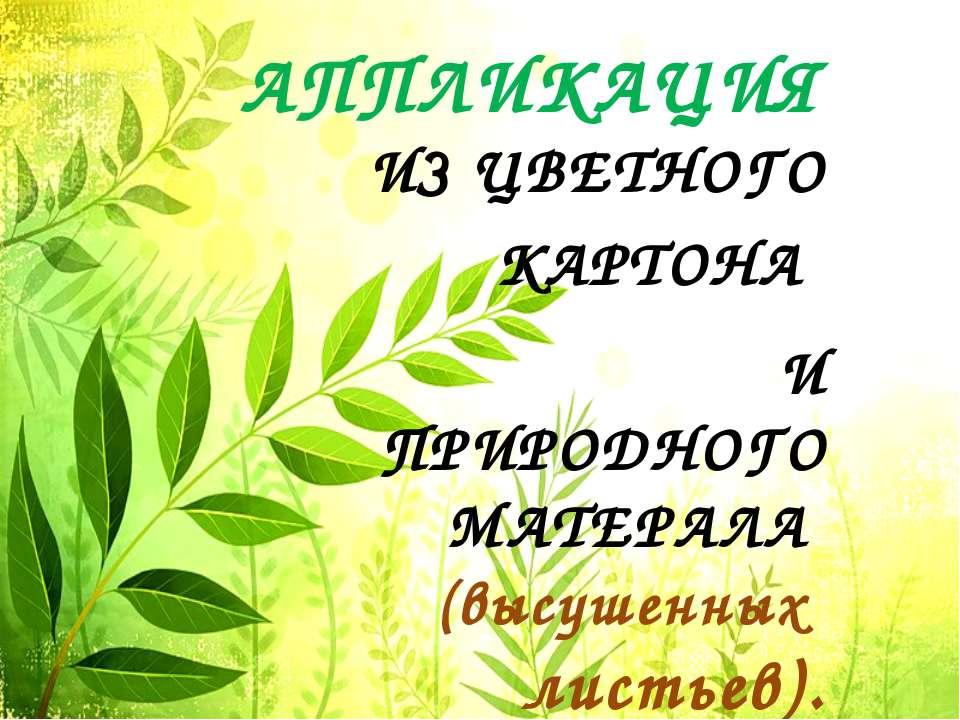 АППЛИКАЦИЯ ИЗ ЦВЕТНОГО КАРТОНА И ПРИРОДНОГО МАТЕРАЛА (высушенных листьев).