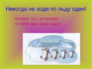 Никогда не ходи по льду один! Человек! Ты – не пингвин. Не гуляй один средь л...