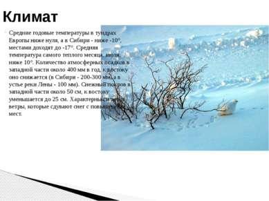 Средние годовые температуры в тундрах Европы ниже нуля, а в Сибири - ниже -10...