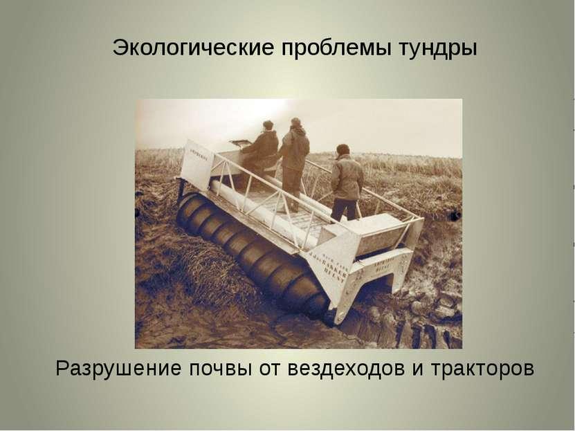 Экологические проблемы тундры Разрушение почвы от вездеходов и тракторов