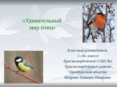 «Удивительный мир птиц» Классный руководитель 5 «В» класса Красногвардейской ...