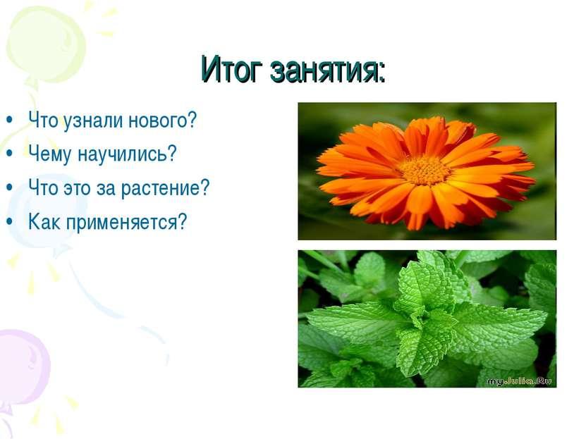 Итог занятия: Что узнали нового? Чему научились? Что это за растение? Как при...