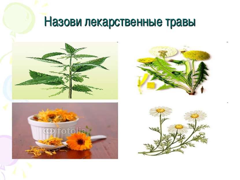 Назови лекарственные травы