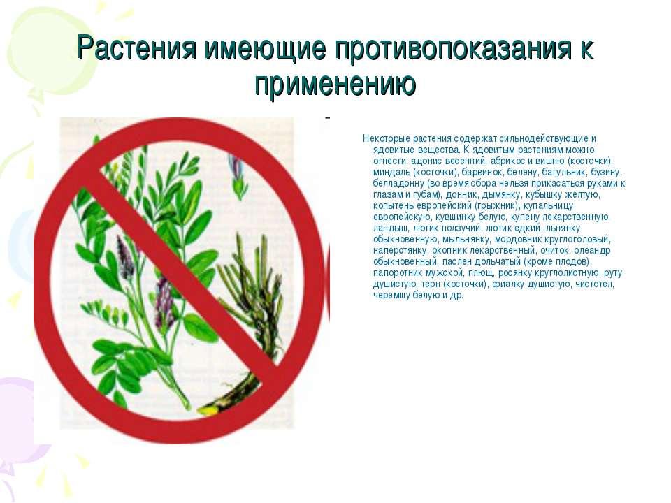 Растения имеющие противопоказания к применению Некоторые растения содержат си...