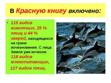 В Красную книгу включено: 115 видов животных, 25 % птиц и 44 % зверей, находя...