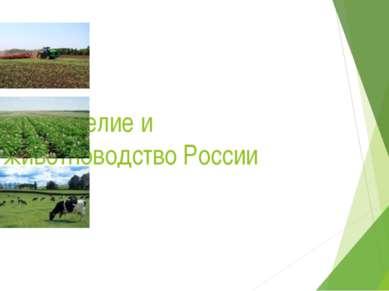 Земледелие и животноводство России