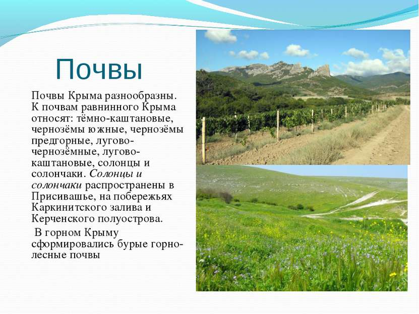 Почвы Почвы Крыма разнообразны. К почвам равнинного Крыма относят: тёмно-кашт...