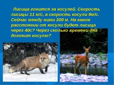 Лисица гонится за косулей. Скорость лисицы 11 м/с, а скорость косули 9м/с. Се...