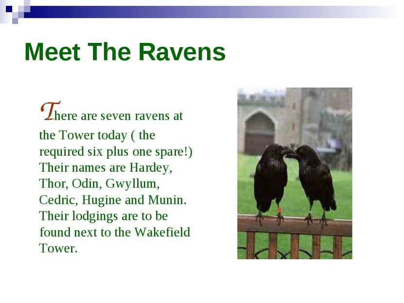 Meet The Ravens There are seven ravens at the Tower today ( the required six ...