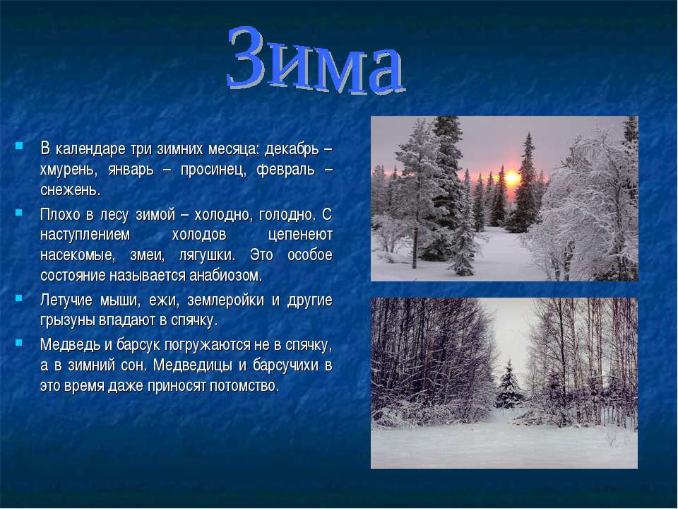 В календаре три зимних месяца: декабрь – хмурень, январь – просинец, февраль ...