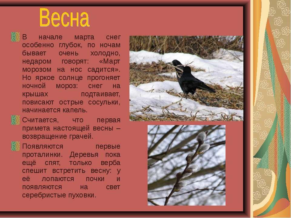 В начале марта снег особенно глубок, по ночам бывает очень холодно, недаром г...