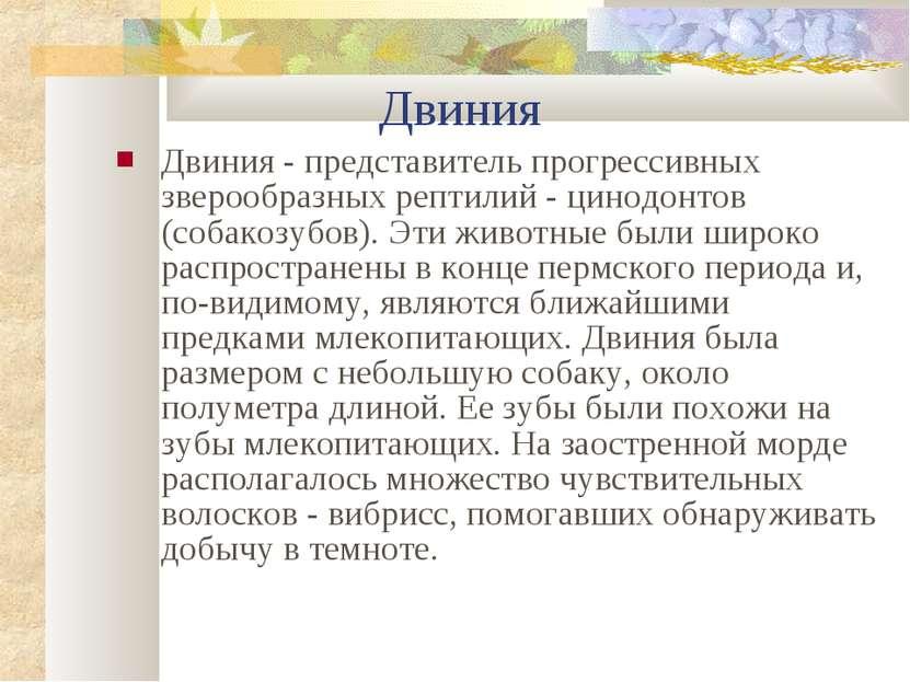 Двиния Двиния - представитель прогрессивных зверообразных рептилий - цинодонт...