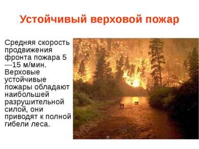 Устойчивый верховой пожар Средняя скорость продвижения фронта пожара 5—15 м/м...