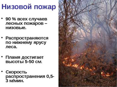 Низовой пожар 90 % всех случаев лесных пожаров – низовые. Распространяются по...