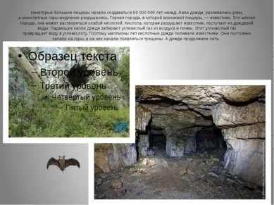 Некоторые большие пещеры начали создаваться 60 000 000 лет назад. Лили дожди,...