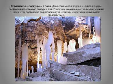 Сталагмиты, «растущие» с пола. Дождевые капли падали и на пол пещеры, раствор...