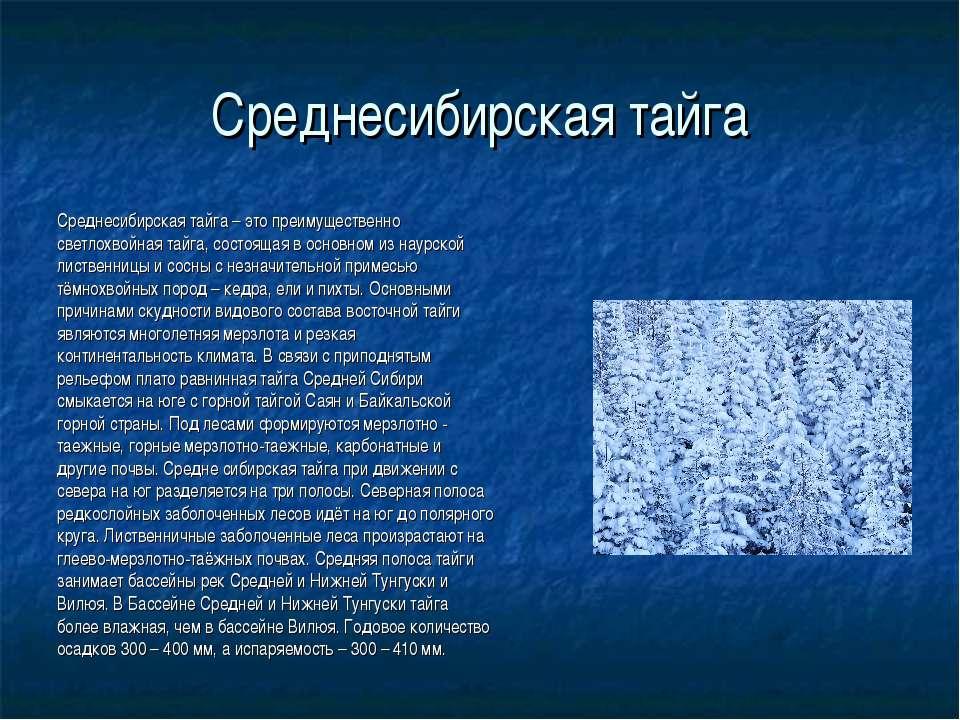 Среднесибирская тайга Среднесибирская тайга – это преимущественно светлохвойн...