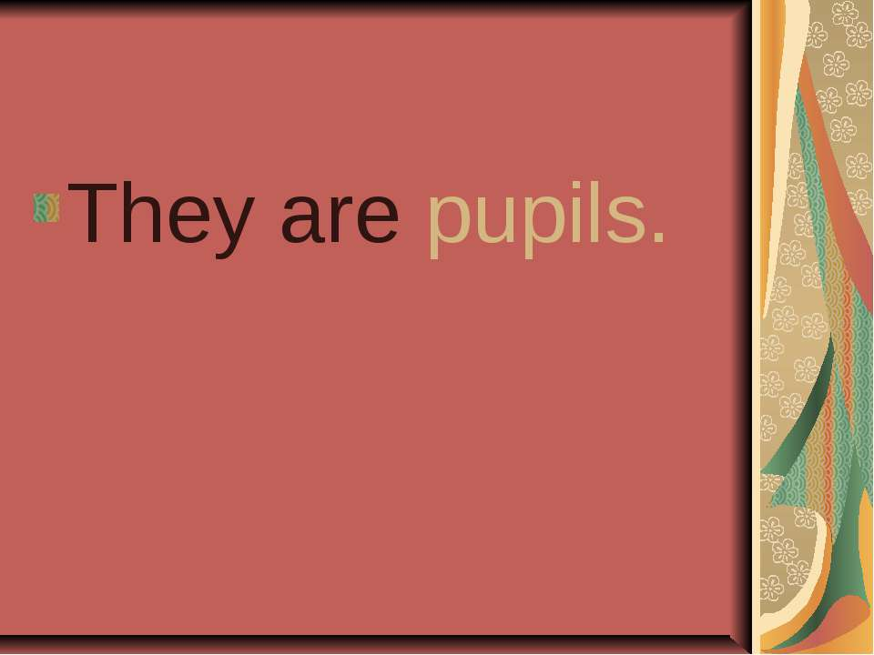 They are pupils.