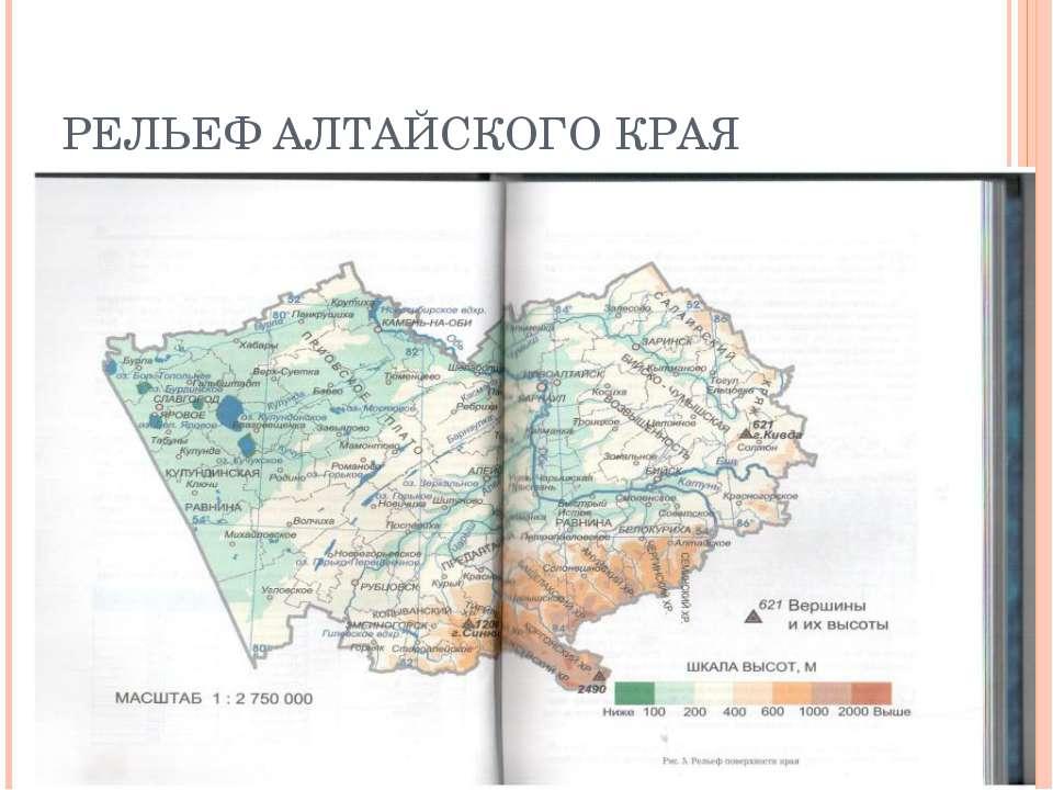 РЕЛЬЕФ АЛТАЙСКОГО КРАЯ