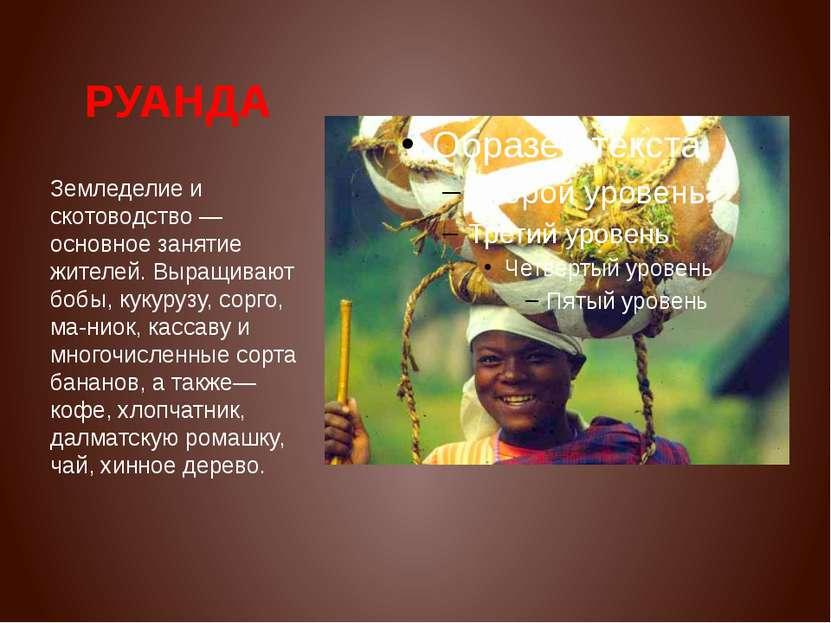 РУАНДА Земледелие и скотоводство — основное занятие жителей. Выращивают бобы,...