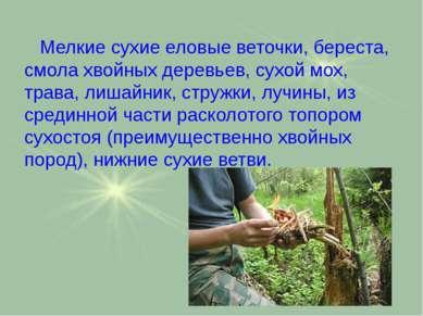 Мелкие сухие еловые веточки, береста, смола хвойных деревьев, сухой мох, трав...