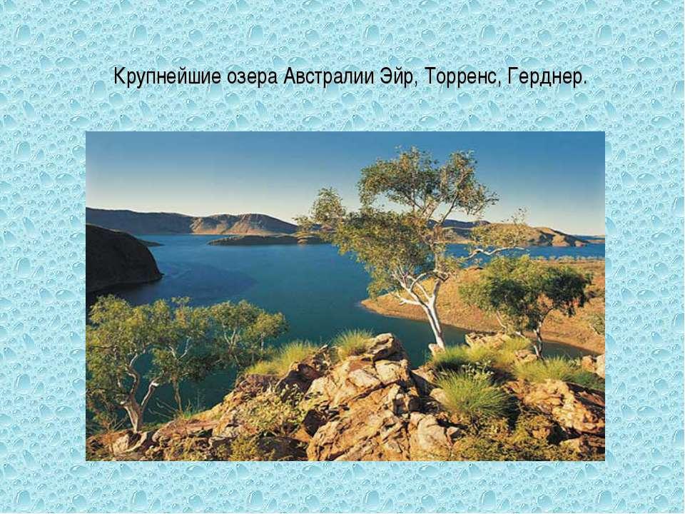 Крупнейшие озера Австралии Эйр, Торренс, Герднер.