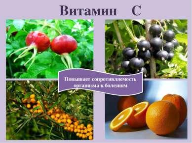 Витамин С Повышает сопротивляемость организма к болезням