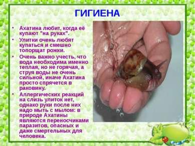 """ГИГИЕНА Ахатина любит, когда её купают """"на руках"""". Улитки очень любят купатьс..."""