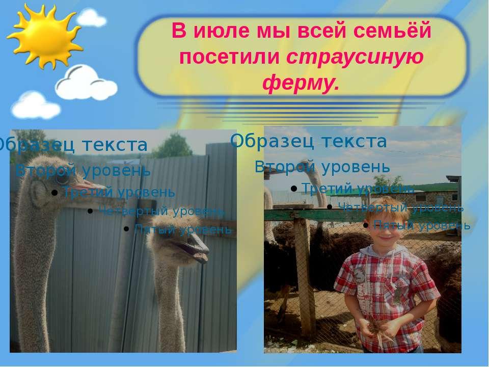 В июле мы всей семьёй посетили страусиную ферму.